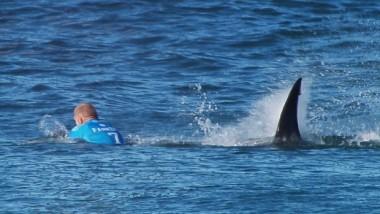Sörfçüye Köpekbalığı Saldırısı